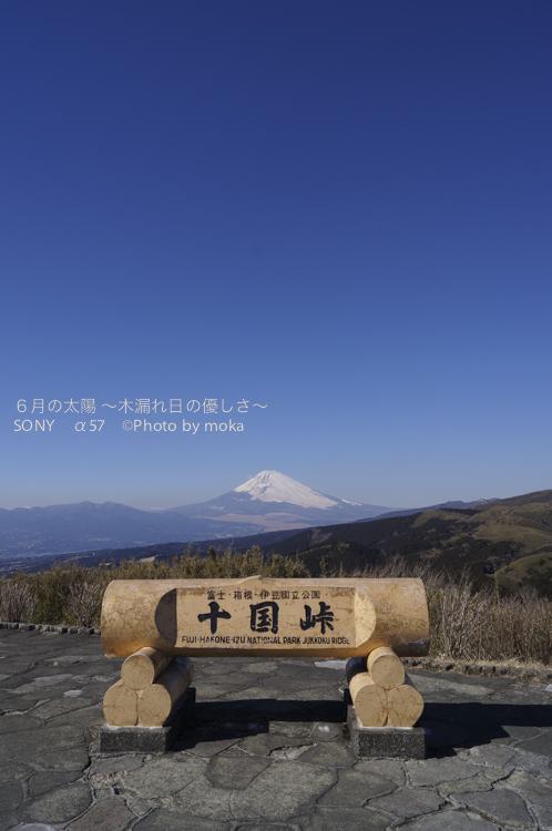20130129_hakone42.jpg