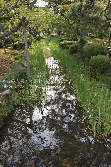 20081009_kanazawa09.jpg