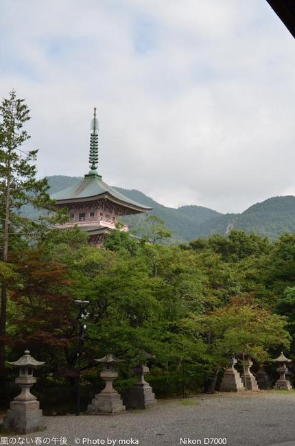 20110829-31_togakushi-adumino017.jpg
