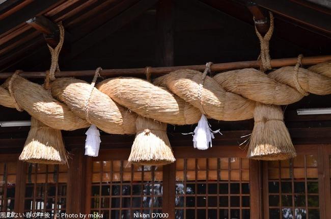 20110829-31_togakushi-adumino173.jpg