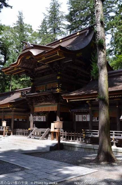 20110829-31_togakushi-adumino177.jpg