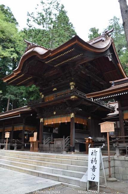 20110829-31_togakushi-adumino181.jpg