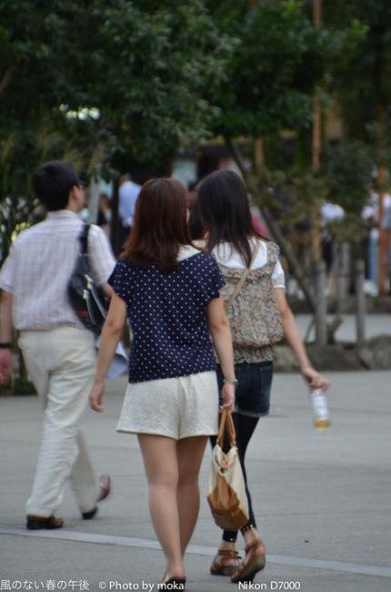 20110904_sensouji29.jpg