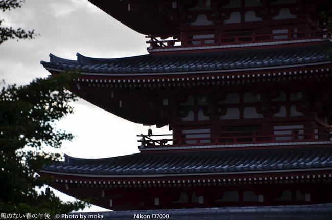 20110904_sensouji37.jpg