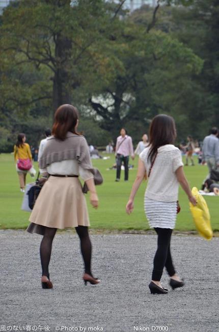 20111001_shinjukugyoen59.jpg