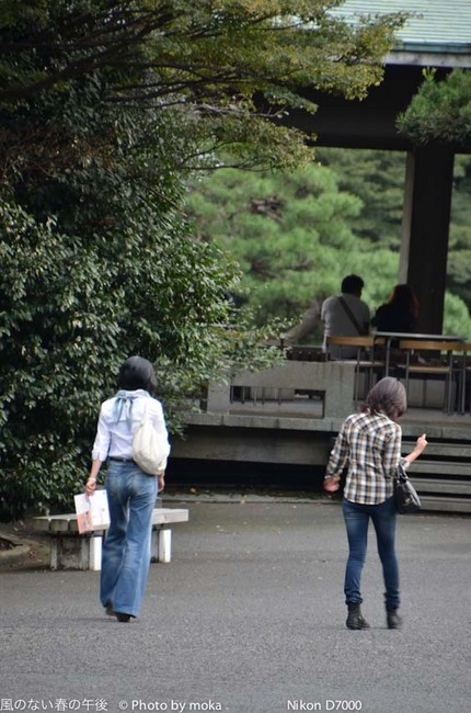 20111001_shinjukugyoen67.jpg