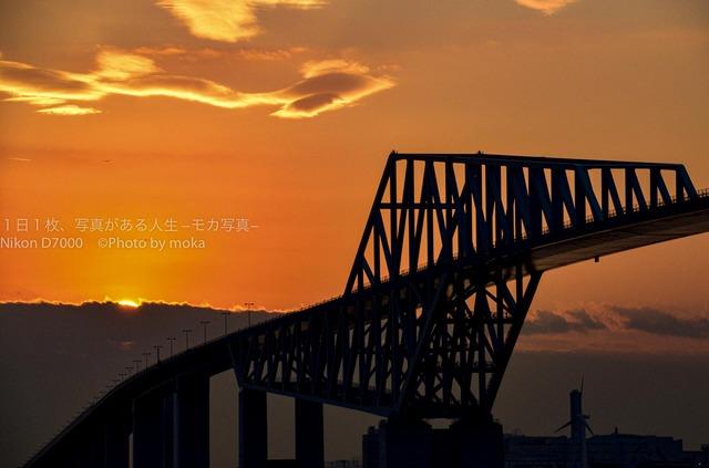 20120110_Tokyo-Gate-Bridge45.jpg