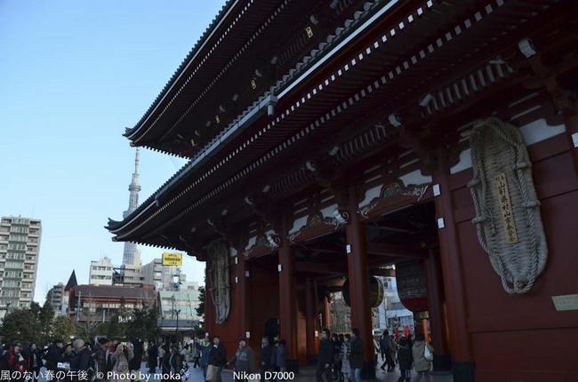 20120128_asakusa19.jpg