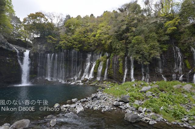 20120419_shiraitonotaki11.jpg