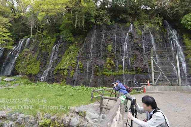 20120419_shiraitonotaki15.jpg