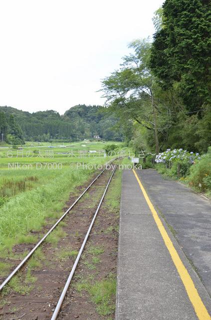 20120723_youroukeikoku25.jpg