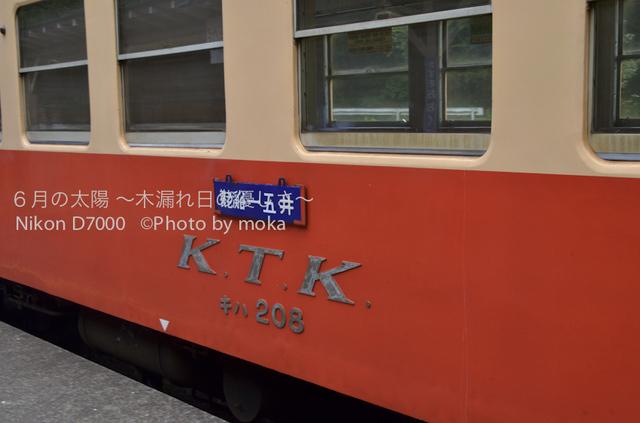 20120723_youroukeikoku64.jpg