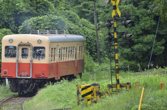 20120723_youroukeikoku74.jpg