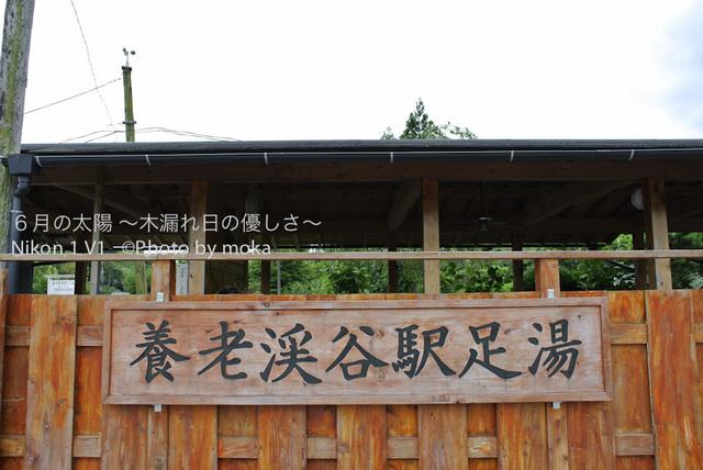 20120723_youroukeikoku84.jpg