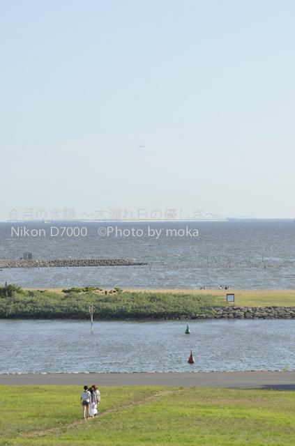 20120827_kasairinkai-park30.jpg