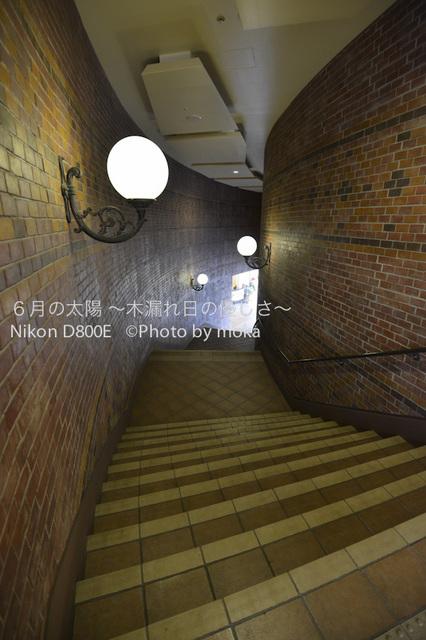 20120830_urayasu15.jpg