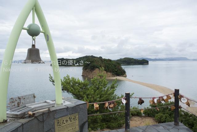 20120917-18_shodoshima64.jpg