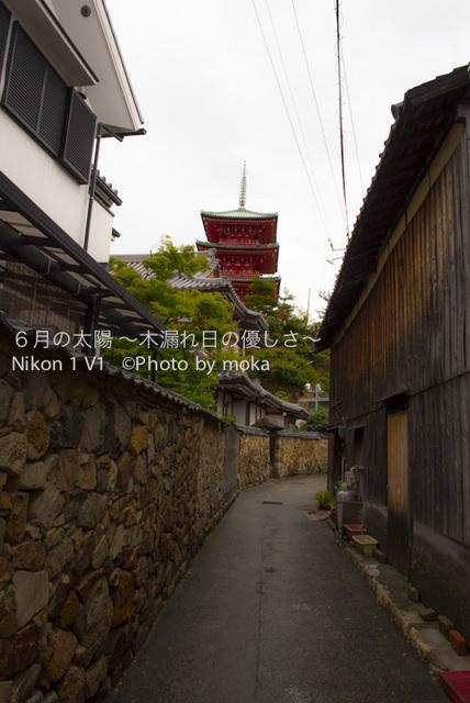 20120917-18_shodoshima74.jpg