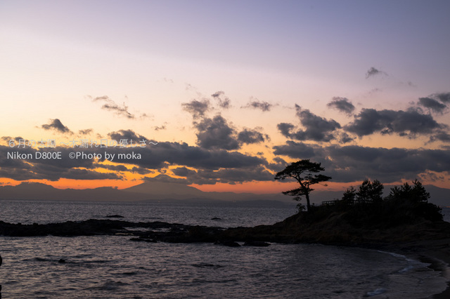 20121227_tateishikouen18.jpg