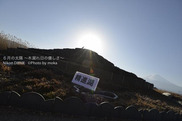 20130102_Mt.Fuji04.jpg