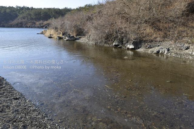 20130102_Mt.Fuji09.jpg