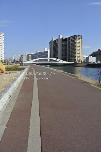 20130110_oujikamiya19.jpg