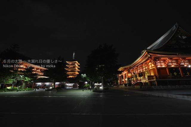 20130630_asakusa02.jpg