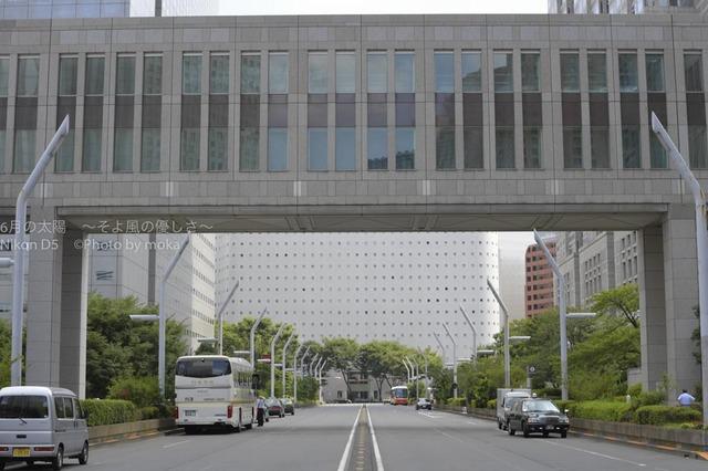 20160811_shinjuku34.jpg