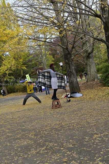 20181118_shouwakinen-park10.jpg