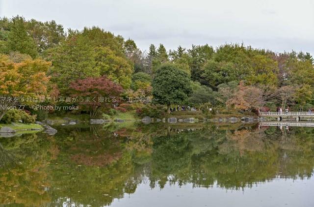 20181118_shouwakinen-park61-1.jpg