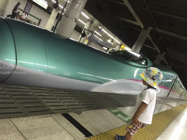 20150712_ueno09.jpg